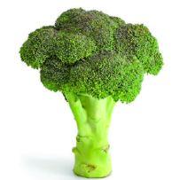 broccoli-01