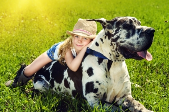 Happy little girl with her mastiff dog on a meadow in summer day